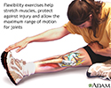 Flexibility exercise